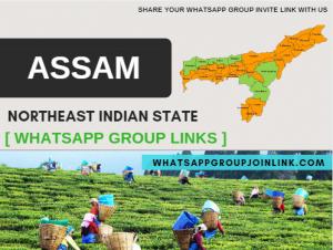 assam whatsapp group link